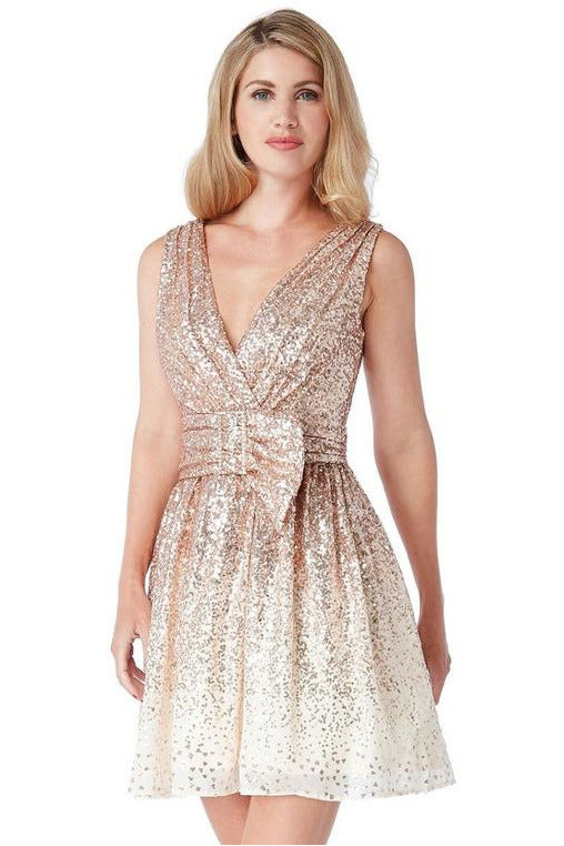 Sequin and Chiffon Belted Skater Dress - Champagne