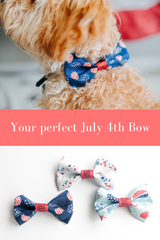 dog wearing red white and blue bow