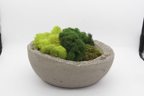 Moss Bowl Multicolored with Rough Edge-Unfound Design