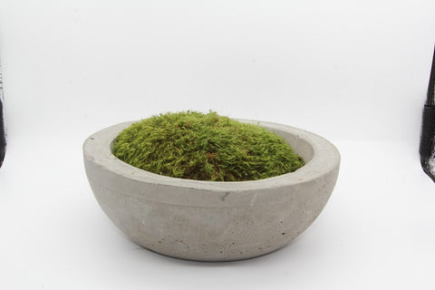 Moss Bowl Single Flat Edge-Unfound Design