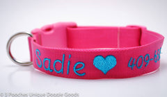 Classic Solid Personalized Collar with Image - 2 inch width