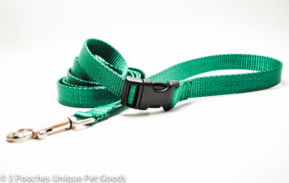 solid buckle dog leash