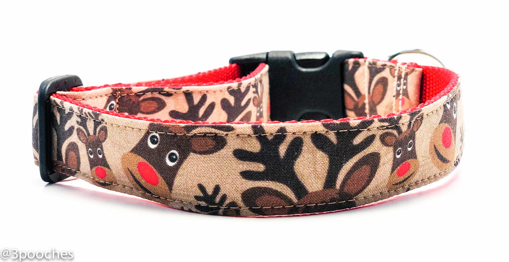 Reindeers in Brown