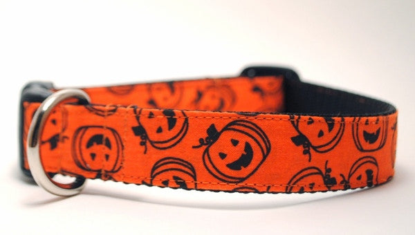 orange pumpkin dog collar