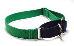 Classic Solid Webbing Martingale Collar