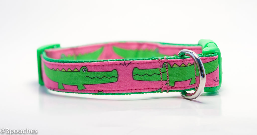 Pink & Lime Crocodile