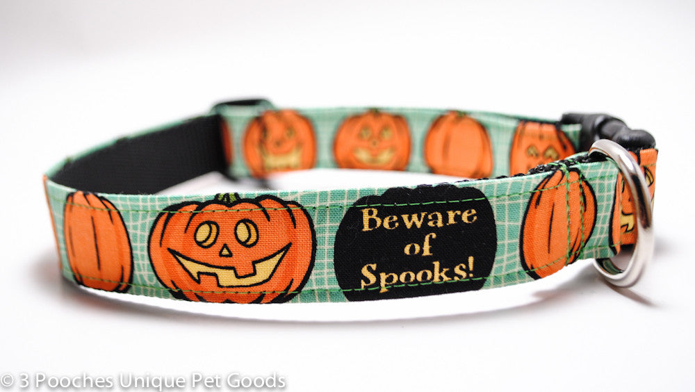Pumpkin Collar