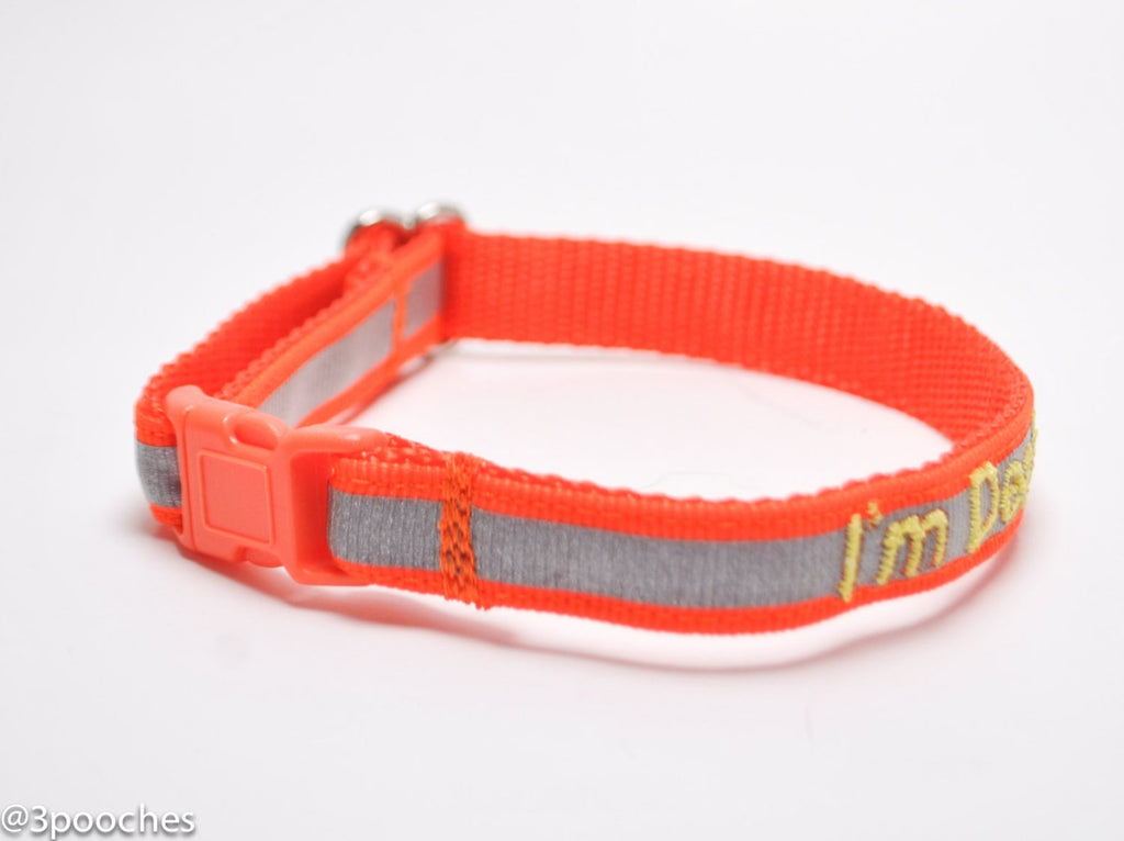 Personalized Reflective Cat Safety Collar