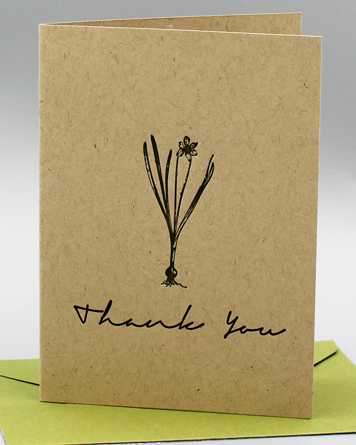 PAPER WHITES THANK YOU CARD