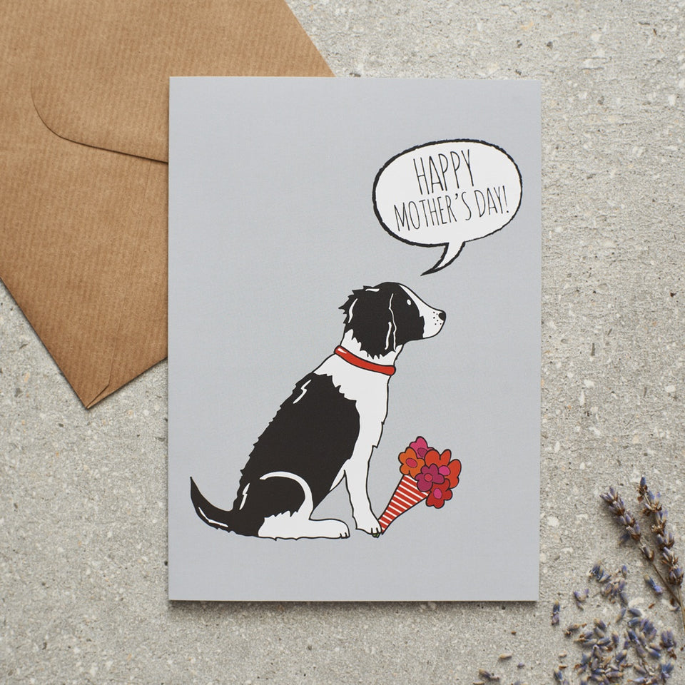 Black & White Springer Spaniel Mother's Day Card - Sweet William