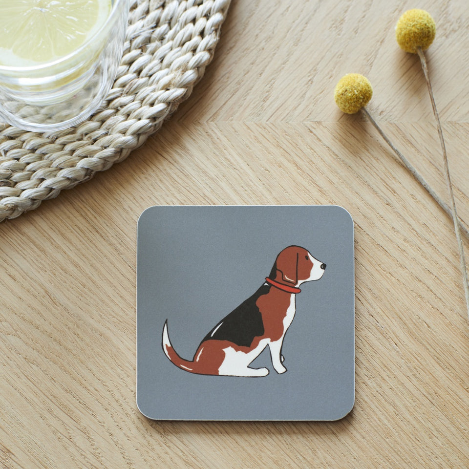 Beagle Coaster - Sweet William