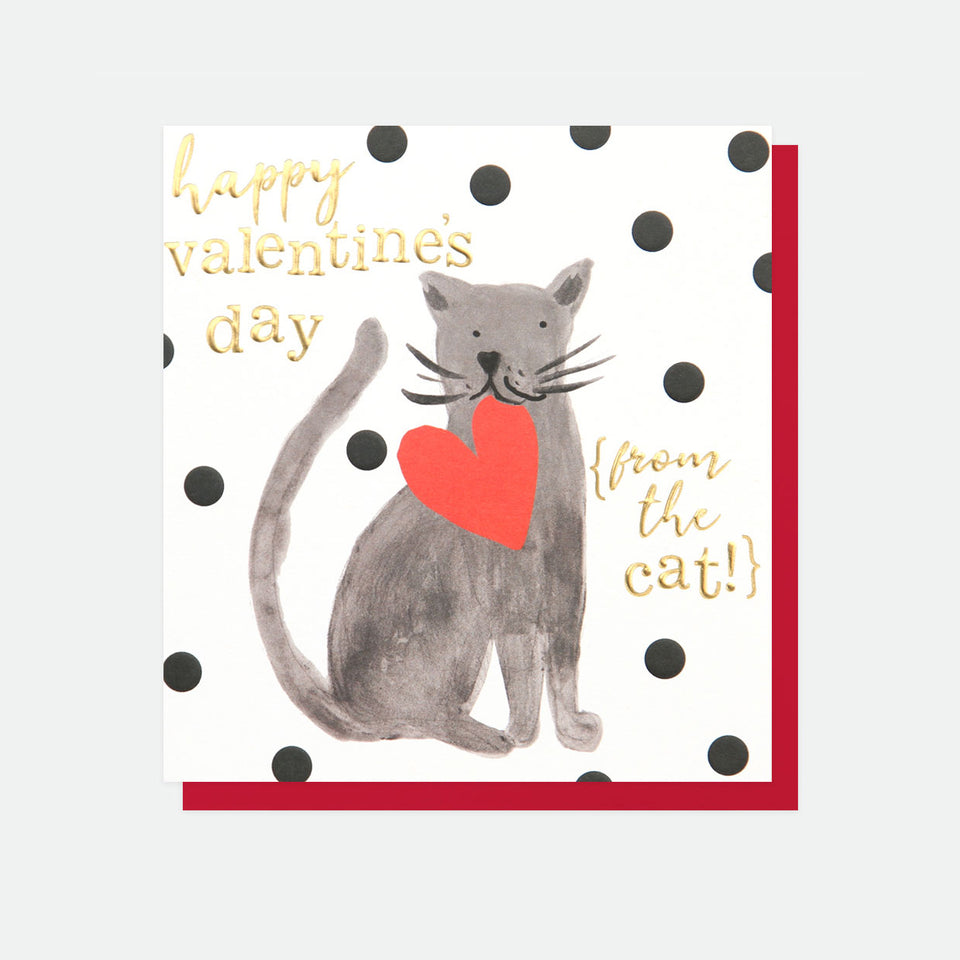 Happy Valentine's Day From The Cat Card - Caroline Gardner