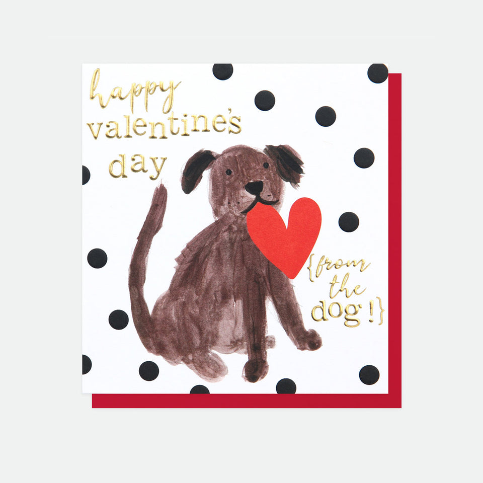 Happy Valentine's Day From The Dog Card - Caroline Gardner