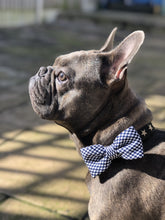 Load image into Gallery viewer, The Chequered Canine Bow Tie