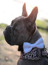 Load image into Gallery viewer, Blue Bow Tie for Dogs