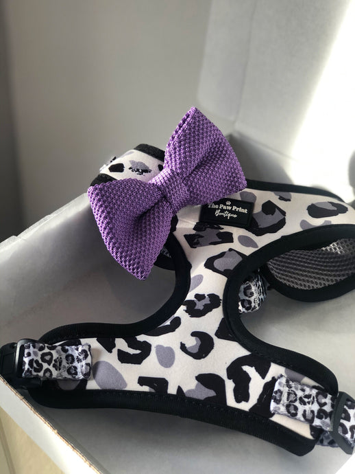 The Purple Paws Bow Tie
