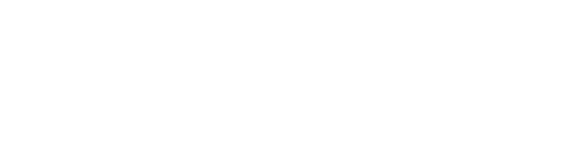 Mewasin Business Forms Plus Logo