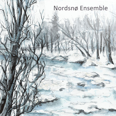 Nordsnø Ensemble - s/t (CD)