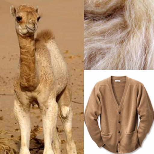 Spotlight on Yarn: Baby Camel Hair