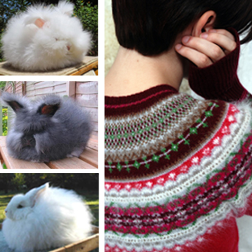 Spotlight on Yarn: Angora