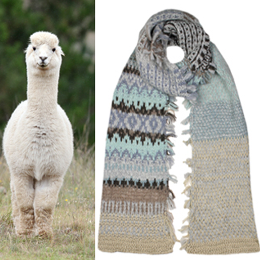 Spotlight on Yarn: Alpaca