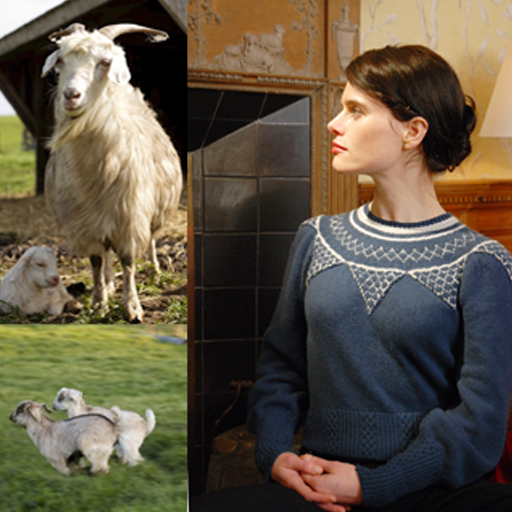 Spotlight on Yarn: Cashmere