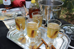 Hot Toddy Gift Set