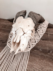 Goat skull table piece