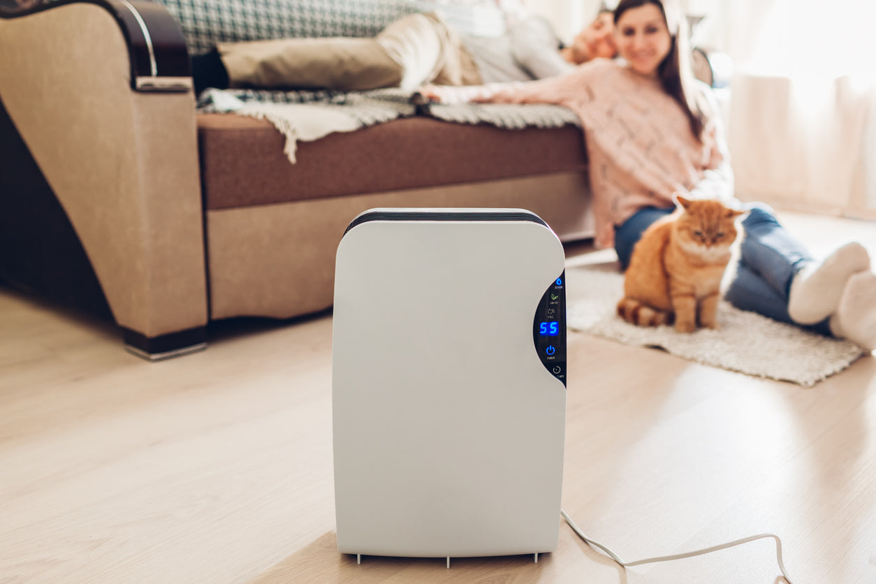 home with dehumidifier