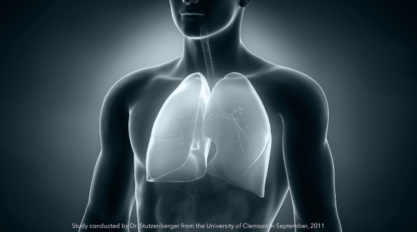 kids have smaller lungs than adults