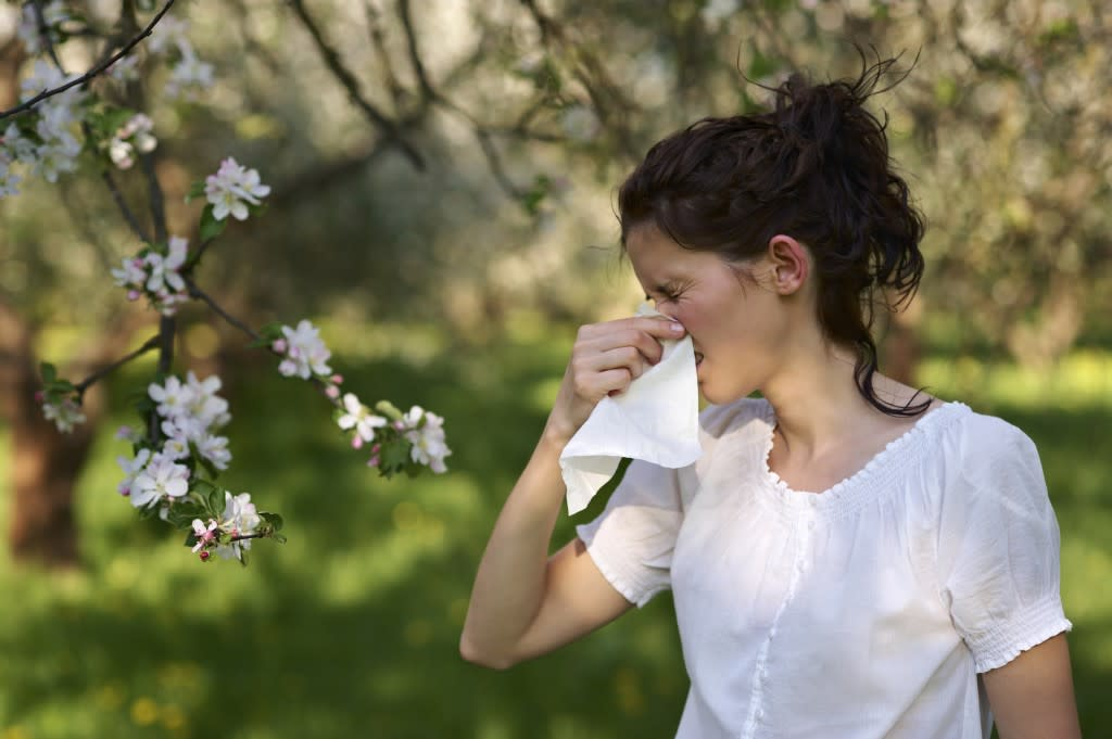 fall allergies on the rise