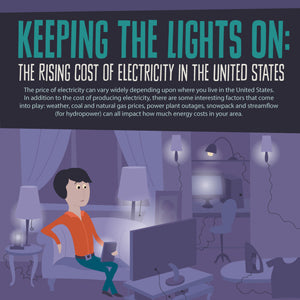 Electricity Costs Infographic
