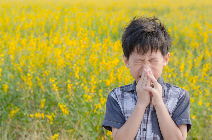 child sneezing from allergies