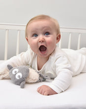 Load image into Gallery viewer, ewan snuggly | Baby Comforter | grey