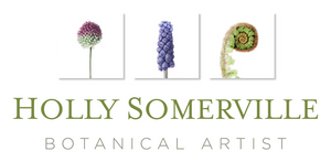 Botanical Art Giftware