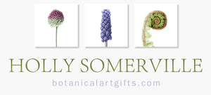 Holly Somerville Logo with three flower images