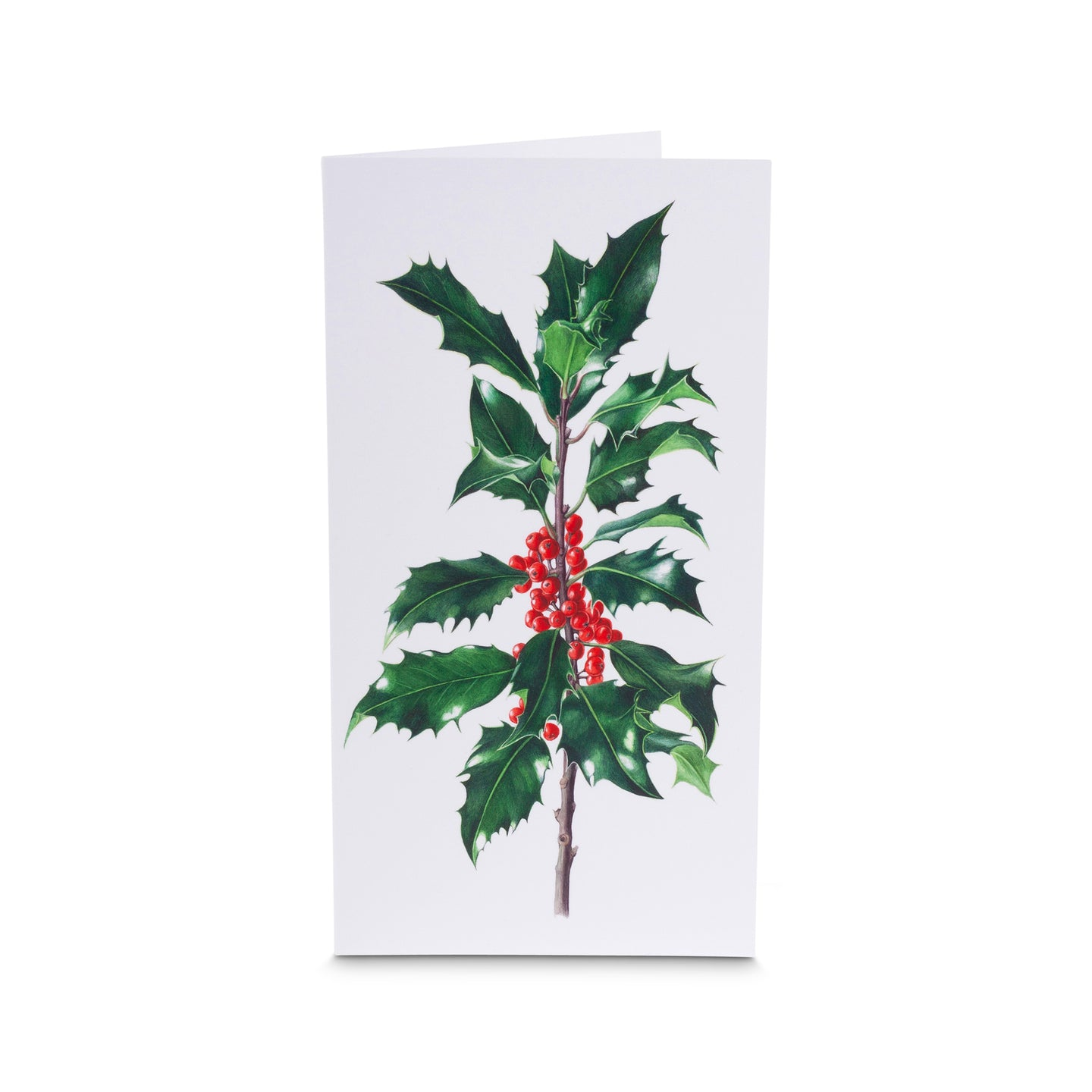 Dargle Hill Holly card