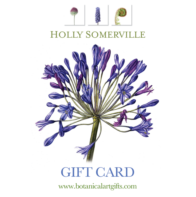 Holly Somerville giftcard