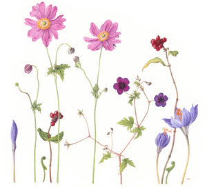 Windflowers limited edition fine art print