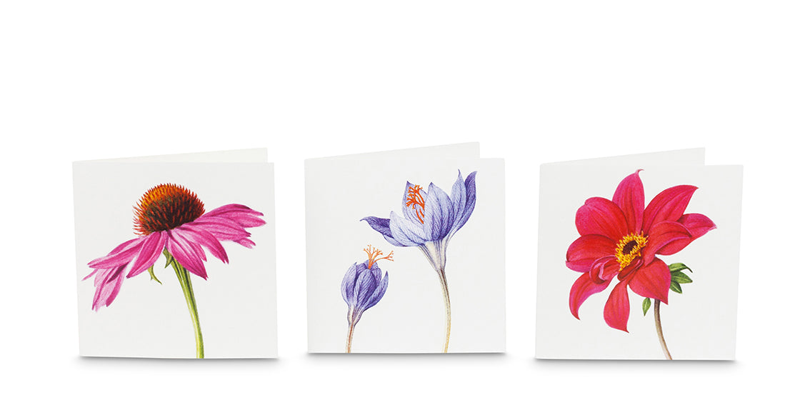 Indian Summer greeting cards
