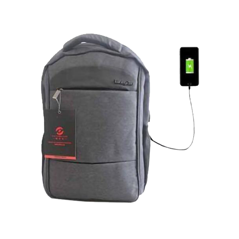TaYongZhe Backpack Grey with USB port