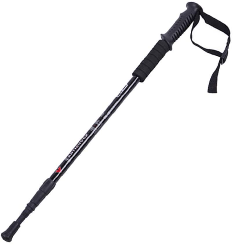 hiking stick black