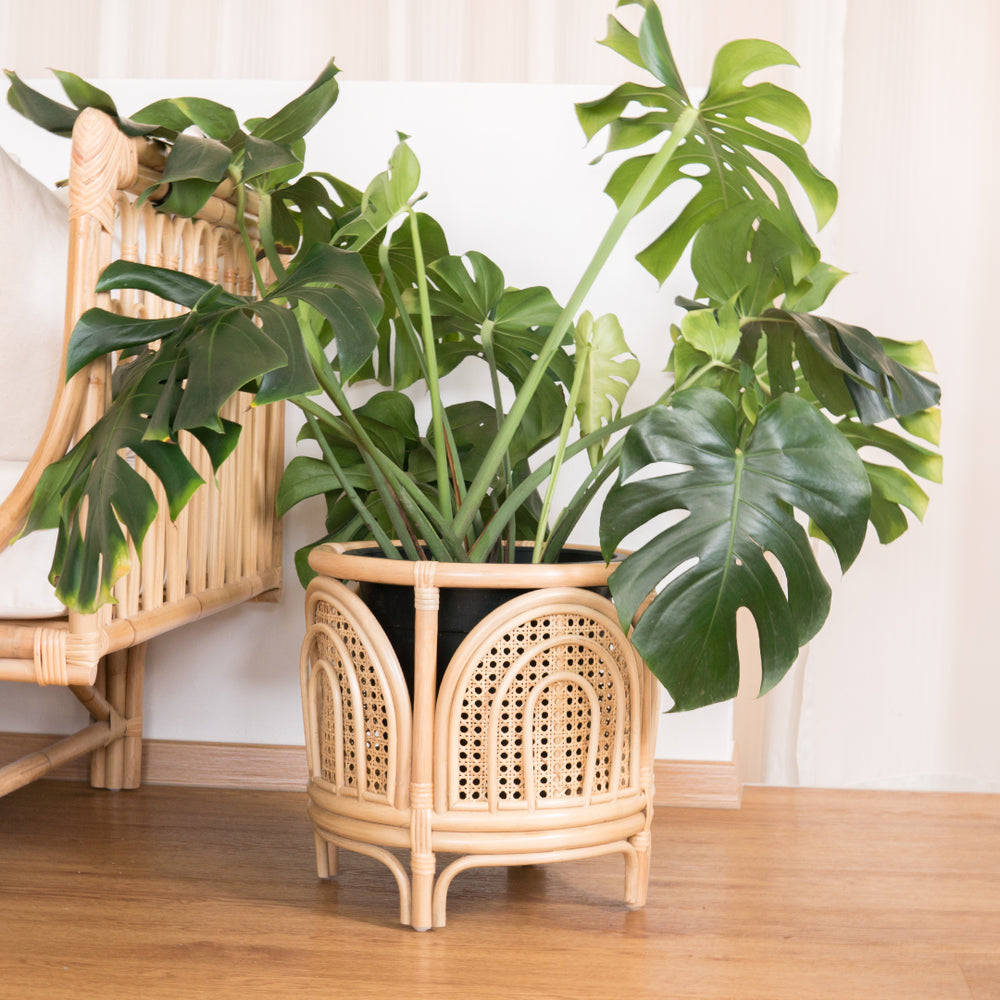 Faith's Rainbow Planter | Buy Rattan Furniture and Rattan Toys Online | Kathy's Cove