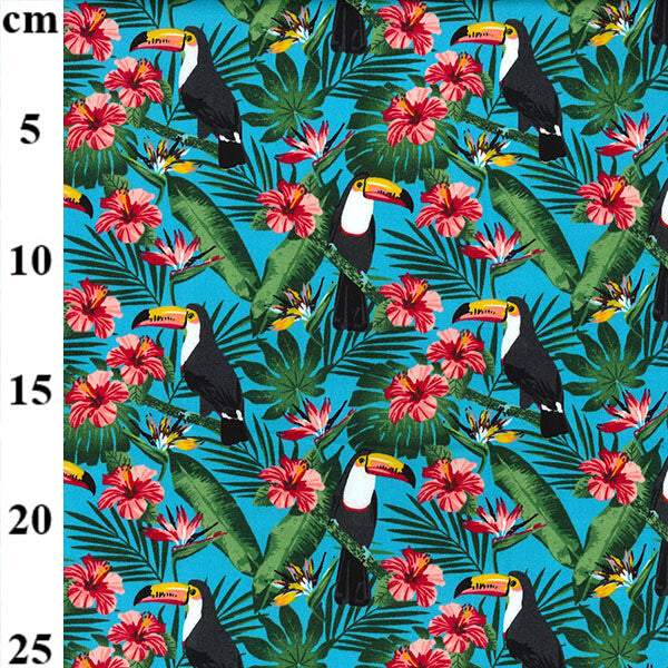 100% Cotton Poplin Print - Toucans on Blue-Little Miss Sew n Sew