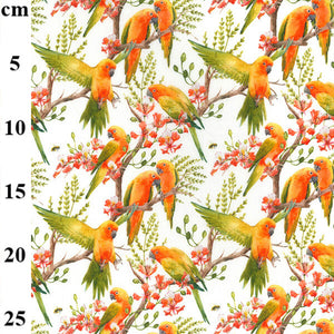 100% Cotton - Parrots on white - Extra Wide-Little Miss Sew n Sew