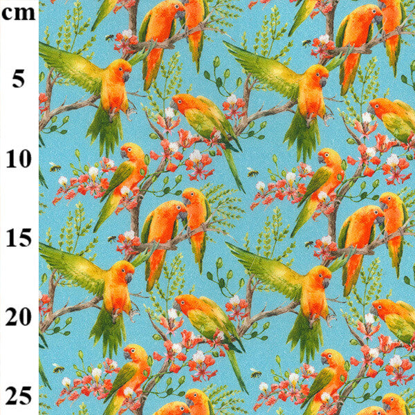 100% Cotton - Parrots on sky - Extra Wide-Little Miss Sew n Sew