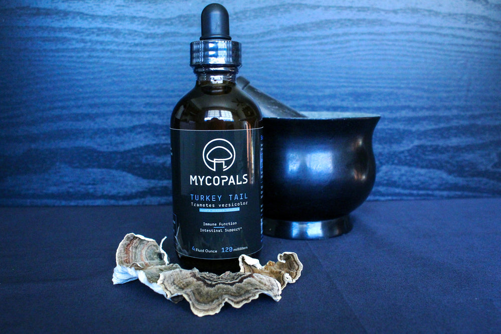 Load image into Gallery viewer, Turkey Tail Double Extract Tincture