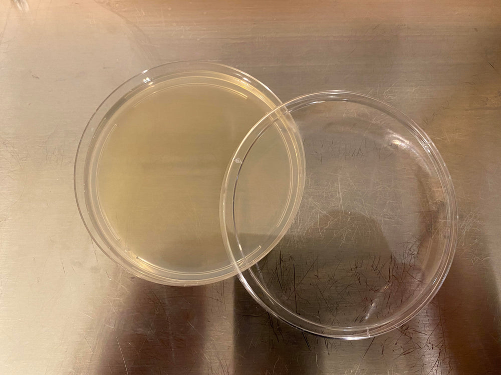 Load image into Gallery viewer, Potato Dextrose Agar [PDA] 198g