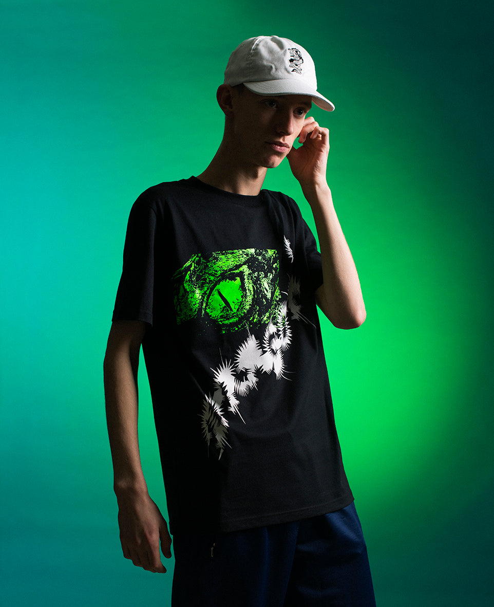 capsule dragon lookbook 1