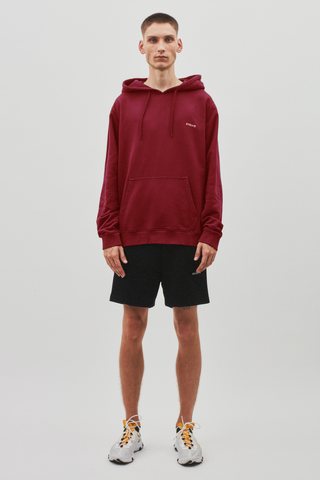 AVNIER Vertical Organic Hoodie Poisonous Red ALPHA FW20